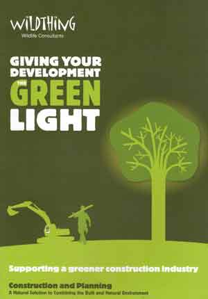Giving Your Development The Green Light